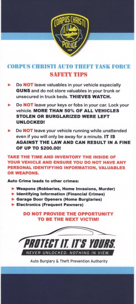 Auto Theft Flyer