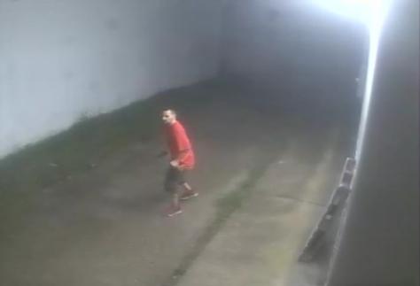 suspect1